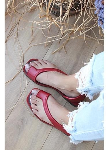Pembe Potin A985-20Kırmızı Kadın Kırmızı Sandalet A985-20Kırmızı Kırmızı